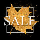 Big autumn SALE vector white sign on golden dust maple leaf at black background Stock Image