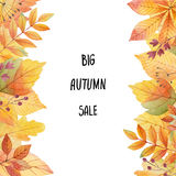 Big autumn sale. Watercolor illustration with colored leaves and hand lettering on a white background. Ideal for design banners, leaflets, posters, flyers with Royalty Free Stock Images