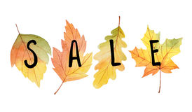Big autumn sale. Watercolor illustration with colored leaves and hand lettering on a white background. Ideal for design banners, leaflets, posters Stock Image