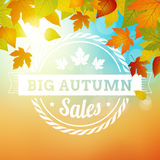 Big autumn sales business background Stock Photography