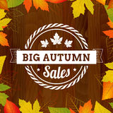 Big autumn sales vintage poster on wood background width leafs. Layered Royalty Free Stock Photos