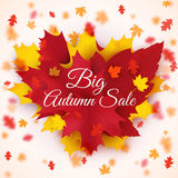 Big Autumn seasonal sale  background with colorful falling leaves. Autumn theme Royalty Free Stock Image