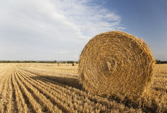 Big bale of hay. Royalty Free Stock Images