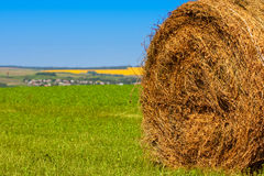 Big bale of straw Royalty Free Stock Photo