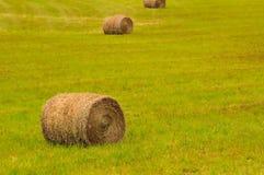 Big bales on field Stock Photos