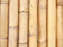 Big bamboo wall. Closeup detail of big bamboo wall Royalty Free Stock Image