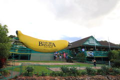 The Big Banana. Tourist attraction in Coffs Harbour - Pacific Highway, NSW, Australia (featuring a large walk-through banana), where visitors take pictures Royalty Free Stock Photography