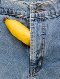 Big banana sticks out of mens jeans like mens penis as potency c Stock Photo