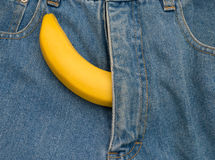 Big banana sticks out of mens jeans like mens penis as potency Stock Images