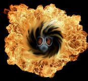 The big bang with gas mask Stock Images