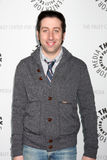 Big Bang, Simon Helberg Lizenzfreie Stockbilder