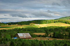 Big barn in farmland. A big metal barn in a green landscape with a gray cloudy sky above green fields and trees Stock Photo