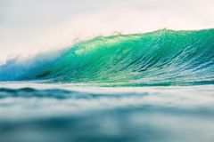 Big barrel wave in ocean. Clear wave and sun light. Big barrel wave in ocean. Clear wave and light Royalty Free Stock Images