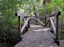 Big Basin Redwoods Park Bridge Royalty Free Stock Photography