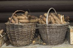 Big baskets full of cones. Two big baskets full of cones royalty free stock photography