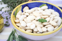 Big beans Stock Photo