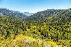 Big Bear Creek Valley. The view down Big Bear Creek Valley in the San Bernardino National Forest from Butler Peak stock images