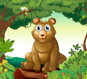 A big bear in the forest royalty free illustration