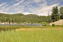 Big Bear marsh Royalty Free Stock Images