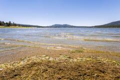 Big Bear sjö Kalifornien Arkivbild