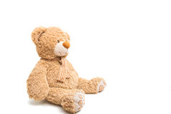 Big Bear soft toy isolated Royalty Free Stock Images