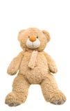 Big Bear soft toy isolated Royalty Free Stock Image