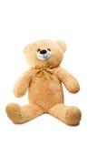 Big Bear soft toy isolated Stock Photo