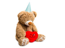 Big Bear soft toy isolated Stock Photos