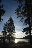 Big Bear at Sunset. Visual of the lake through the pine trees at sunset Stock Photography