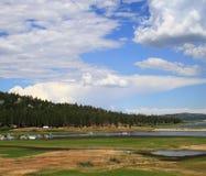 Big Bear wetlands Royalty Free Stock Image