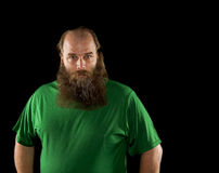 Big bearded on a balding man. A balding middle aged man with a big bearded isolated on a black background wearing a bright green shirt as he looks into the royalty free stock image