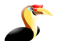 Wrinkled Hornbill Stock Photography