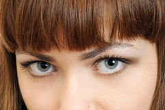 Big beautiful gray eyes. Big beautiful woman gray eyes royalty free stock image