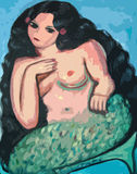 Big beautiful mermaid. Illustration Stock Image