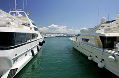 Big, beautiful, stunning and luxurious white yachts Stock Image