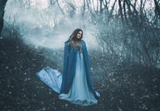 A big, beautiful woman in a blue raincoat. Walks in a fog. Background dark forest, bare trees. Creative colors stock photo