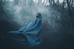 A big, beautiful woman in a blue raincoat. Walks in a fog. Background dark forest, bare trees. Creative colors royalty free stock photos