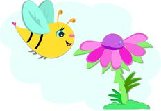 Big Bee and Pink Flower Stock Image