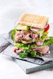 Big beef sandwich Stock Images