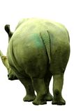 Big behind. The very large back side of a rhinoceros royalty free stock images
