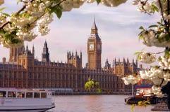 Big Ben auf der Themse Stockfotografie