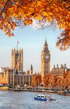 Big Ben with autumn leaves in London, England, UK Stock Images