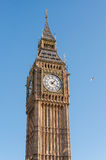 Big Ben Clock Tower in London Stock Image