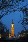 Big Ben at Dusk Stock Image