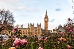Big Ben e o parque de St Thomas Hospital Trust, Londres Imagem de Stock Royalty Free