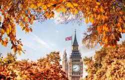 Big Ben klocka mot höstsidor i London, England, UK Arkivfoton