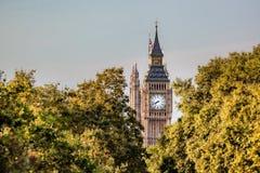 Big Ben klocka mot träd i London, England, UK Arkivbild
