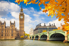 Big Ben, London. Big Ben with autumn leaves, London