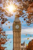 The Big Ben in London during fall time. With falling leafs Stock Images