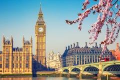 Big Ben in London am Frühling stockbilder